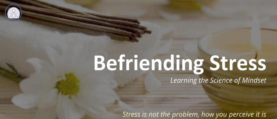 Befriending Stress