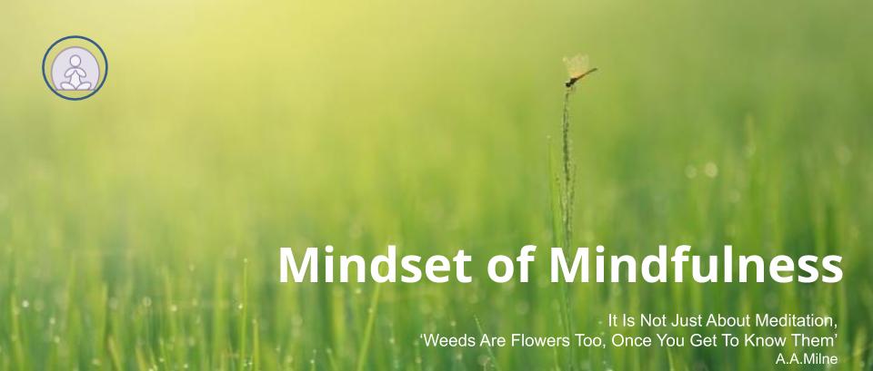 Mindset of Mindfulness